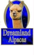 dreamlandalpacas